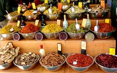 Spice-and-Spirit-of-Tu-Bshevat.jpg