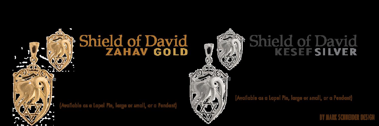 Shield Of David Pin Licensing Marketing Jewish Federation Of