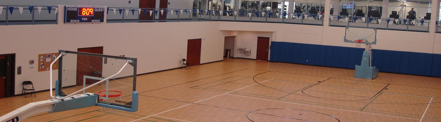 south tampa gym